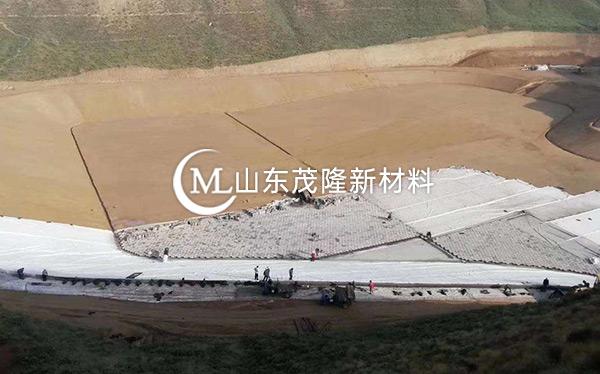 《东平龙王沟》复合土工膜施工