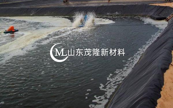 人工湖土工膜产品演示图1