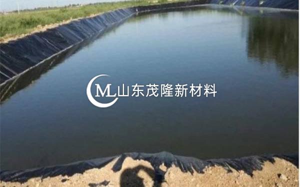 人工湖土工膜